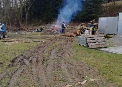 Kácení stromů u Zemanky